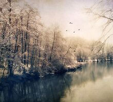 Winter Tones by Jessica Jenney