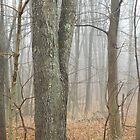 The Fog by joan warburton
