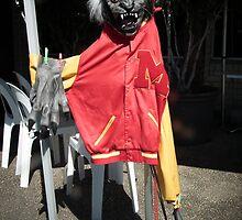 Wolf Mask By Matthew Lys by Access Arts Camera Wonderers