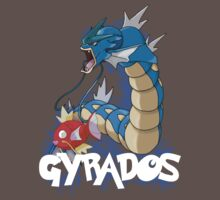 Gyrados Evolutions by iibbo1