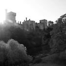 Lismore castle over the clean blackwater by morrbyte