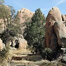 Prescott Boulders by Gordon  Beck