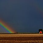 Somewhere Over the Rainbow by Cee Neuner