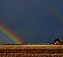 Somewhere Over the Rainbow by Cee Neuner