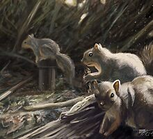 SQUIRRELS from El Dorado Nature Park by ItoSaithWebb