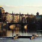The city of chiaro scuro by su2anne