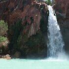 Havasu Falls by Arod28