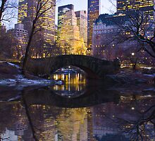 Central Park   by Ryan Mingin