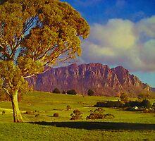 Mt Roland, Tasmania by Michael John