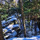 Bilger's Rocks in winter by vigor