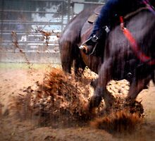 Rodeo. Barrel Runners. by Barbara  Jean