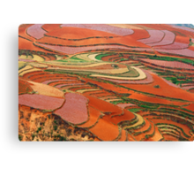 Red Land 01 Canvas Print
