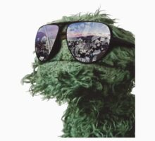 Oscar the Grouch by ernieandbert