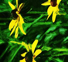 Black Eyed Susan Flowers Abstract Impressionism by pjwuebker
