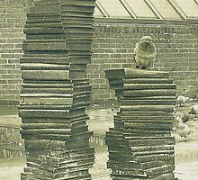 Monument of books by flashcompact