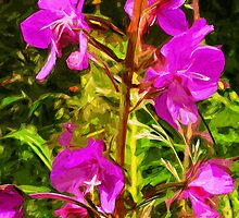 Purple Fireweed Alaska State Flower Abstract Impressionism by pjwuebker