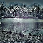Central Park by VDLOZIMAGES