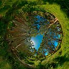 Stereographic view from Lachlan Swamp by Erik Schlogl