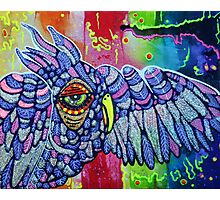 Street Wise Owl Photographic Print