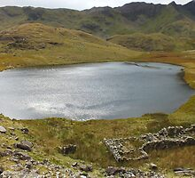 Snowdon Lake by Johindes