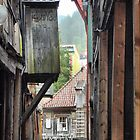 Bergen Harbour (8) - Alleyways in Wood by Larry Lingard-Davis