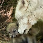 Arctic Wolf And Pups by WolvesOnly