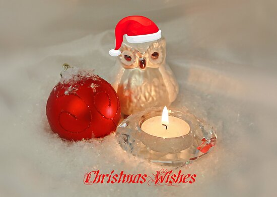 Owl Christmas by AnnDixon