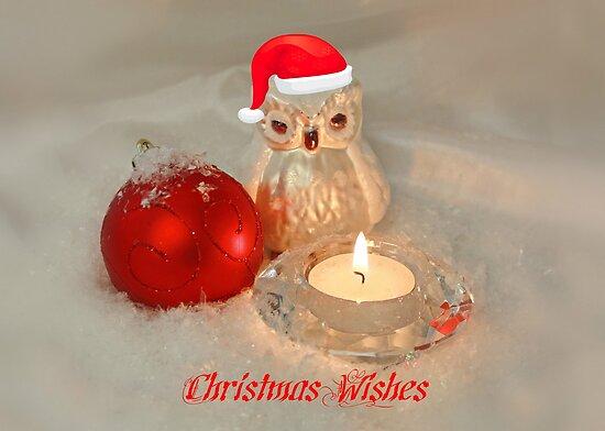 Owl Christmas by AnnDixon