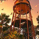 Port Augusta Images by Georgie Sharp by Georgie Sharp