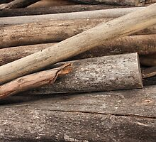 Stacked Logs by rhamm