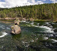 Yellowstone River by Charles Kosina
