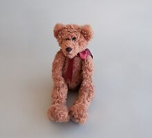 Teddy Bear by donberry
