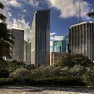Miami Skyscrapers by njordphoto