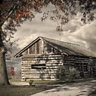 The Old Hixson Barn by LarryB007