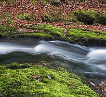 River Neath in Flow by Nick Jenkins