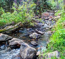 Crossover at Hardscrabble Creek by Dee Carmack