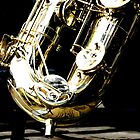 The Baritone Saxophone  by PictureNZ