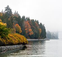 Fall Fog at Stanley Park by Michael Russell