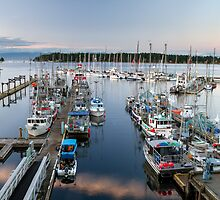 Fishing Boats at Nanaimo Harbour by Michael Russell