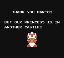 But Our Princess is in Another Castle by timnock