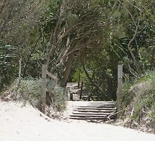 Beach Stairs. by FangFeatures