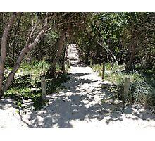 Beach Path. Photographic Print