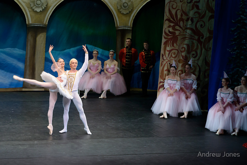 A scene from Nutcracker, performed by the Monica Loughman Ballet, Wexford Opera House by Andrew Jones