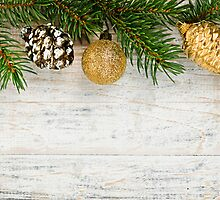 Christmas background with ornaments on branch by Elena Elisseeva