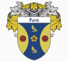 Ford Coat of Arms/Family Crest by William Martin