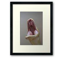 Big Yawner  Framed Print