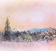 Warm Up The Winter Sky by Diane Schuster