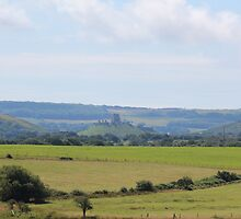 Corfe Castle seen from the RSPB Reserve at Arne by richalfa156