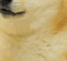 Doge classic Sticker