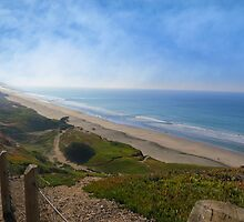 Fort Funston on the Pacific by David Denny